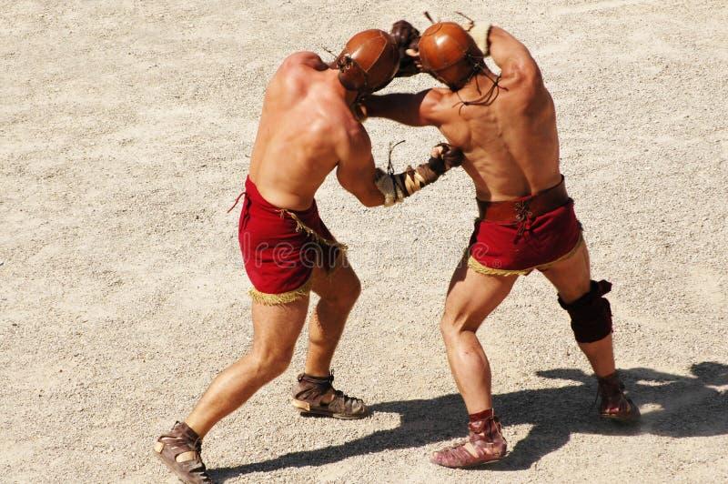 Gladiatoren stockfotos