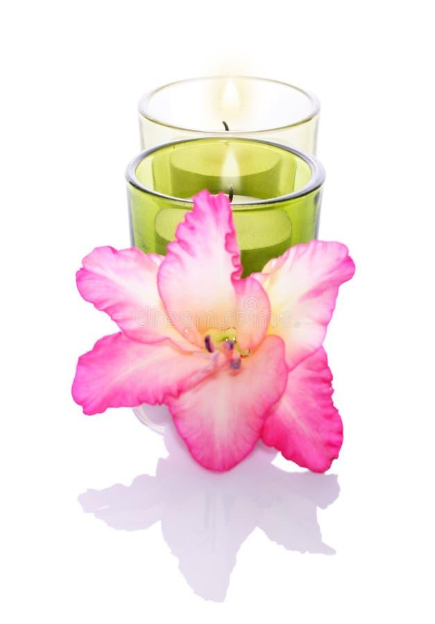 Gladiola en kaarsen stock fotografie