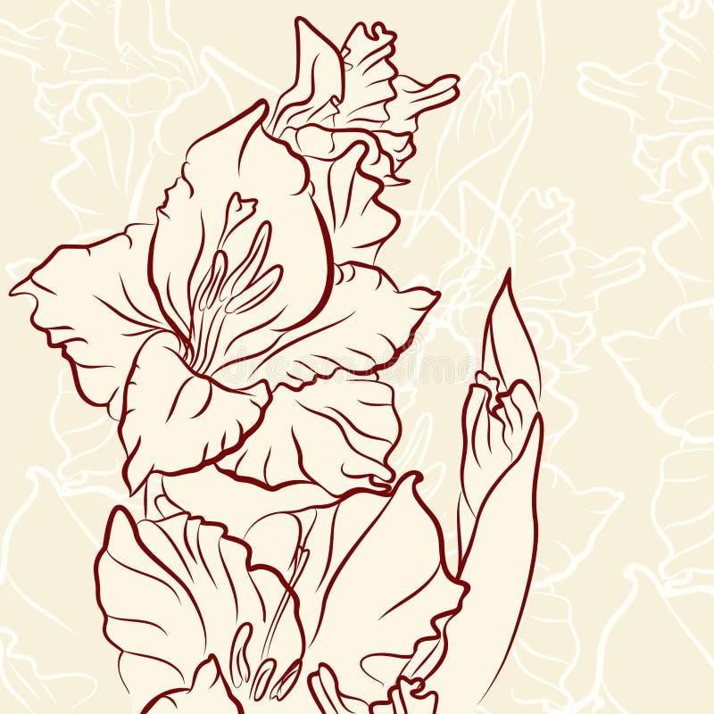 Download Gladiolen vector illustratie. Illustratie bestaande uit bruin - 29510160