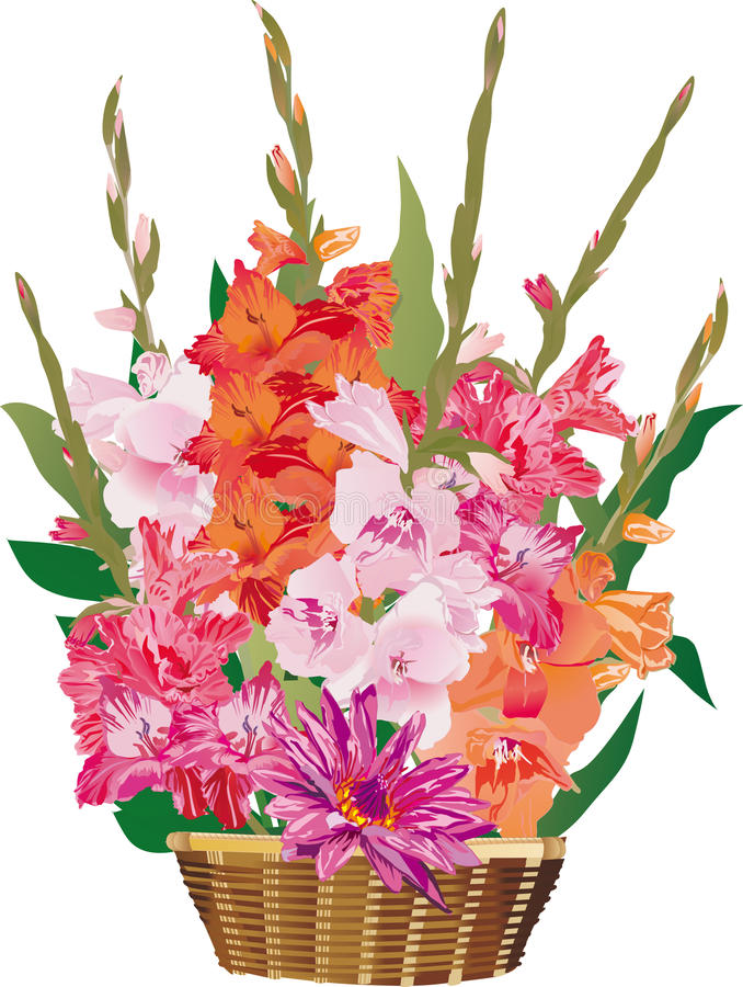 Free Gladiolus Flowers In Basket Stock Image - 16907751