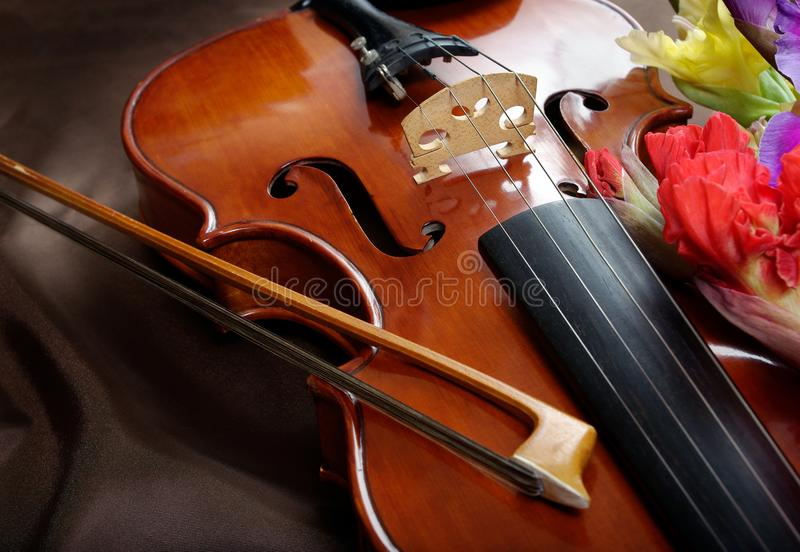 Gladiolus and violin. violin and flowers on a silk background. royalty free stock images