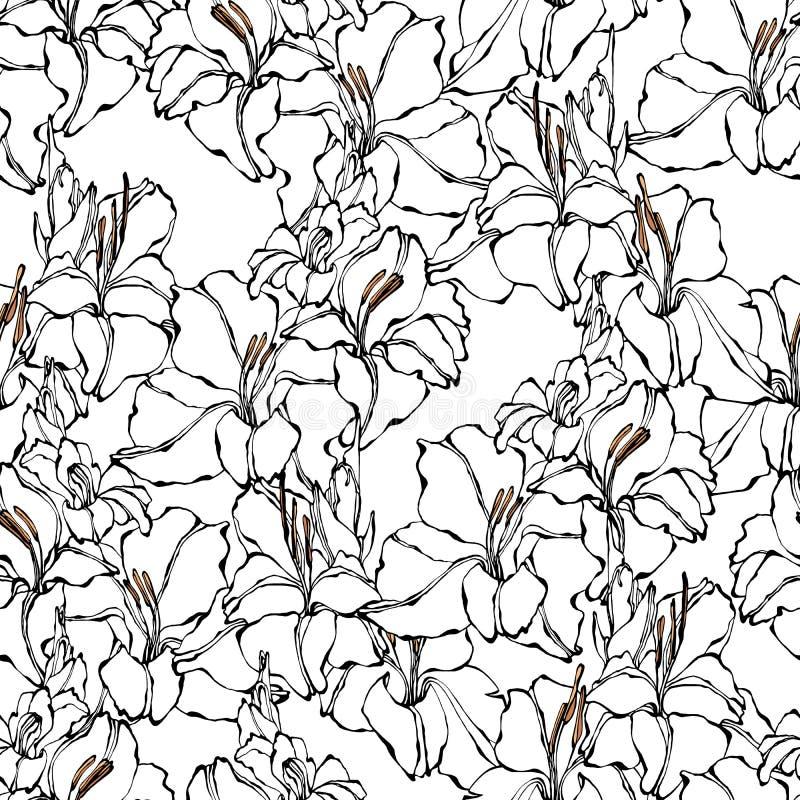 Gladiolusa bezszwowy wzór ilustracja wektor