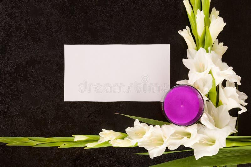 Gladioly fiorisce con carta in bianco per l'avviso di necrologio immagini stock
