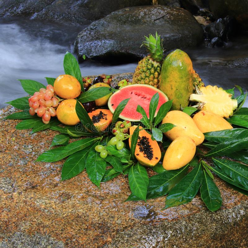 gladlynt blandade fruktfrukter royaltyfri fotografi
