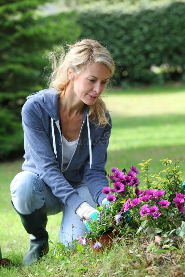 Gladlynt blond kvinna som planterar blommor royaltyfri bild