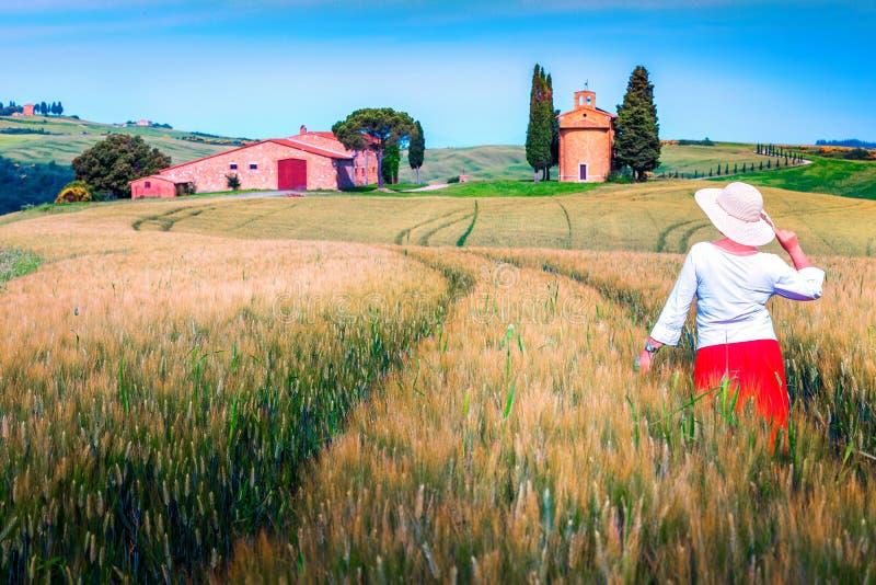 Gladlynt kvinna som tycker om sikten i kornfält, Tuscany, Italien royaltyfri fotografi