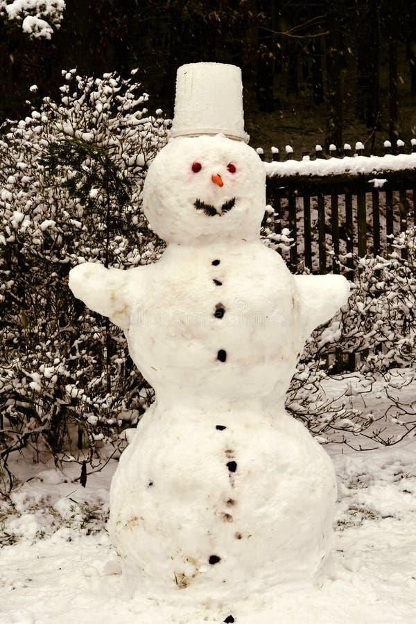 Gladlynt snögubbeanseende i trädgården arkivbild