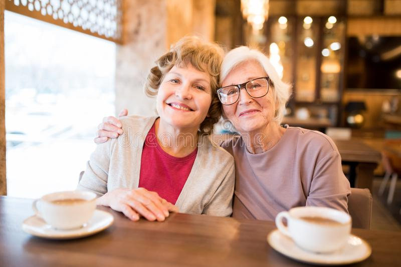 Gladlynta höga damvänner i coffee shop arkivfoton