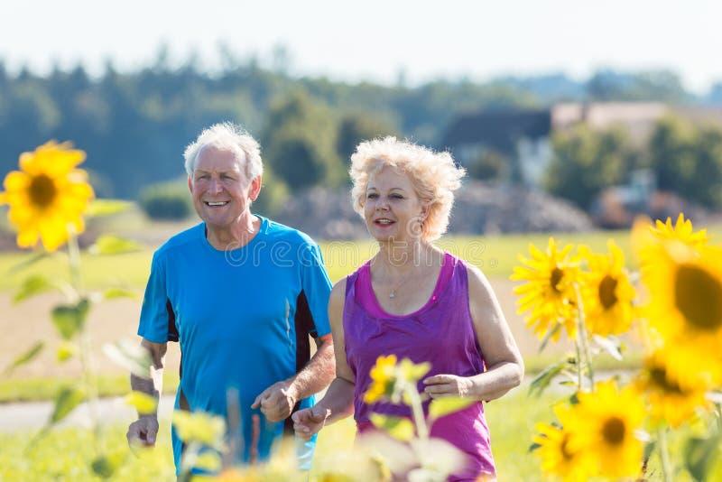 Gladlynta höga par som tillsammans utomhus joggar i landet royaltyfri foto