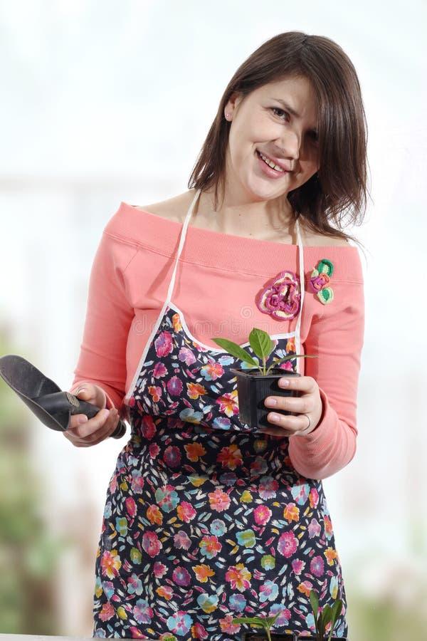 Gladlynta kvinnor i växthus royaltyfri fotografi