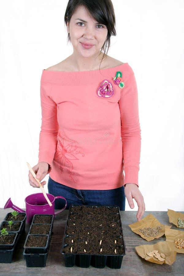 Gladlynta kvinnor som planterar grönsakfrö arkivbilder