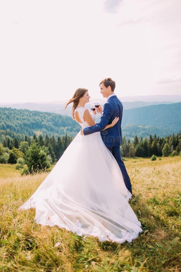 Gladlynta nygifta personer som utomhus dricker vin och att fira deras förbindelse mot bakgrund field blåa oklarheter för grön vit fotografering för bildbyråer