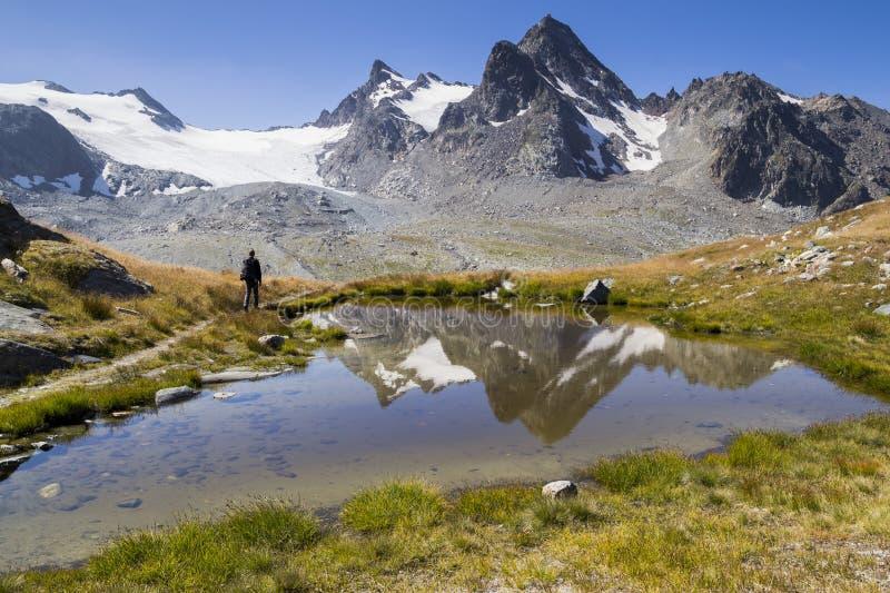 Glaicier in montagne alpine fotografie stock libere da diritti