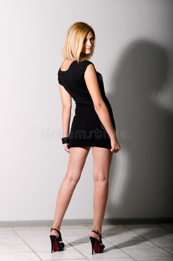 Glamour beauty royalty free stock image