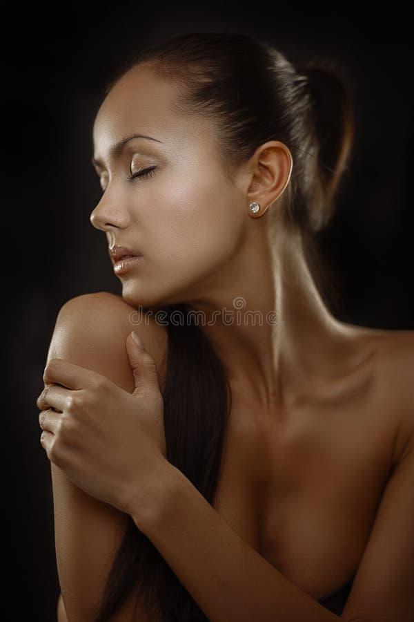 Glamourbrunette stock afbeeldingen
