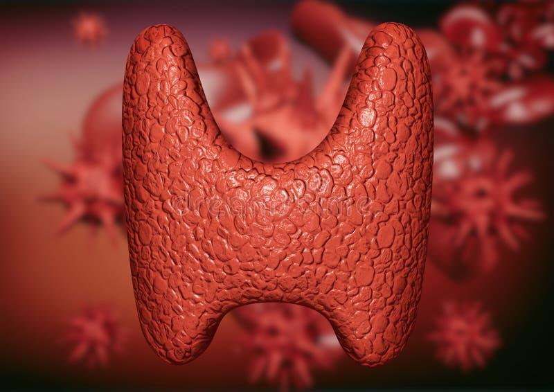 Glande thyroïde souillée par des virus et des bactéries Engagement du système endocrinien par des parasites illustration stock