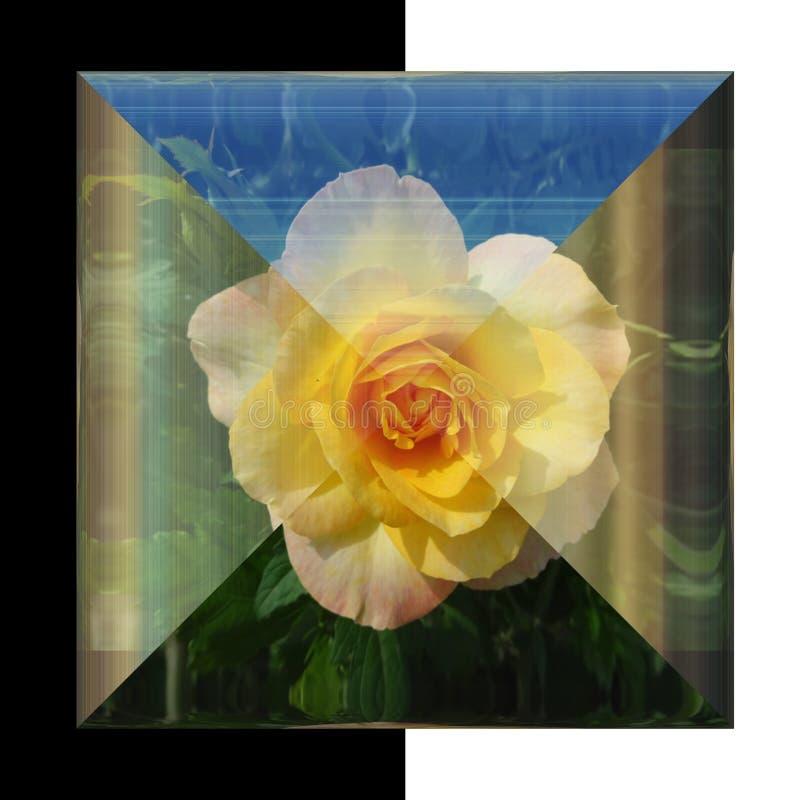 glansig fyrkantig knapp 3D med den verkliga blomman royaltyfri foto
