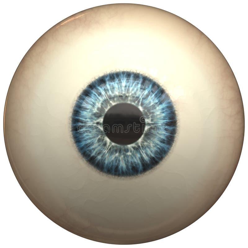 glansigt blått öga för boll vektor illustrationer