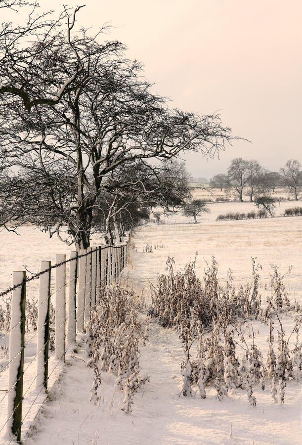 glanton多雪的视图 库存图片