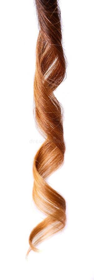 Glanzende bruine die krul op wit wordt geïsoleerd stock afbeelding