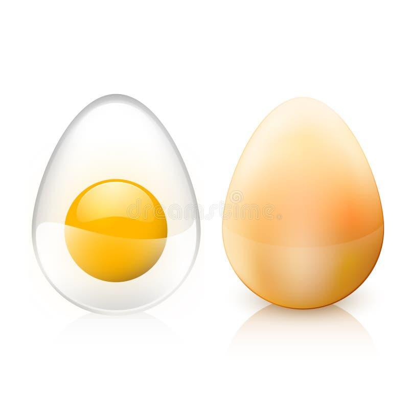 Glanzende eieren vector illustratie