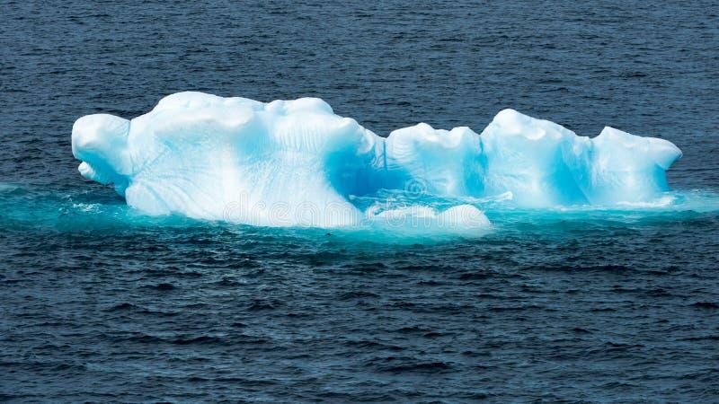 Glanzende turkooise Ijsberg die door turkoois glanzend water, Groenland wordt omringd royalty-vrije stock afbeelding