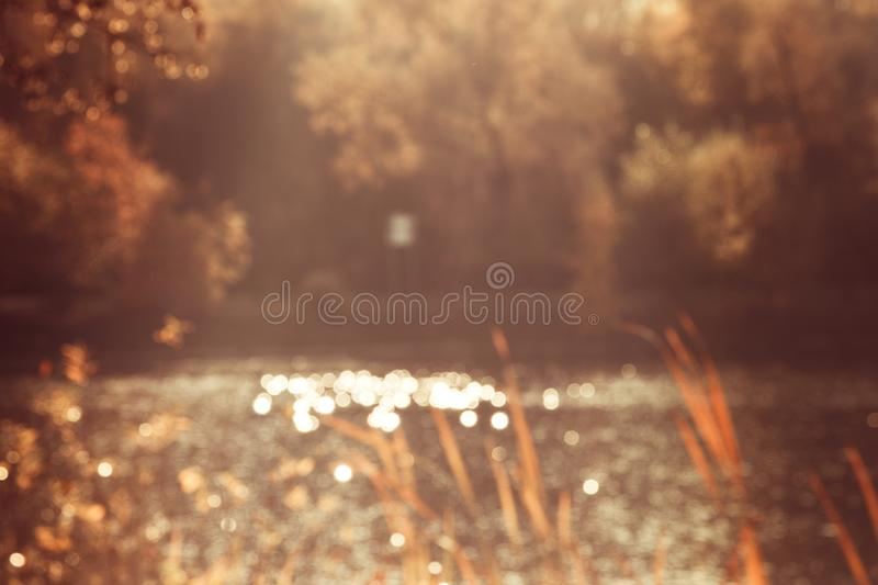 Glare from the sun on the water in the pond blurred picture of trees nature background.  stock image