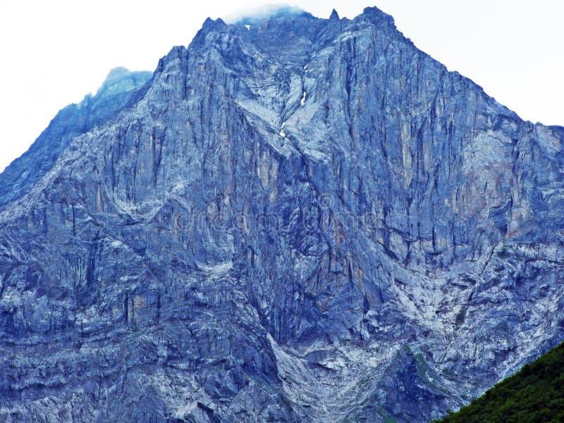 Glarner Vorab Westwand eller Vorab-Westwand, alm royaltyfri foto