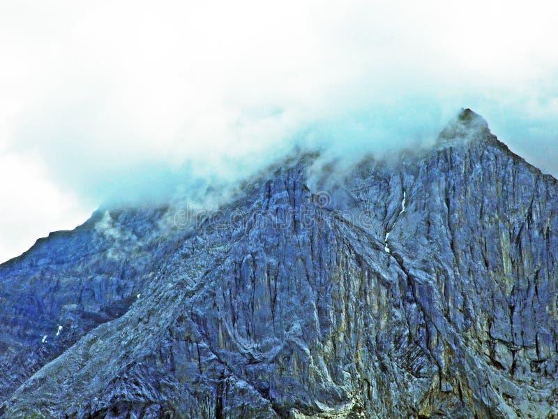 Glarner Vorab Westwand eller Vorab-Westwand, alm royaltyfri bild