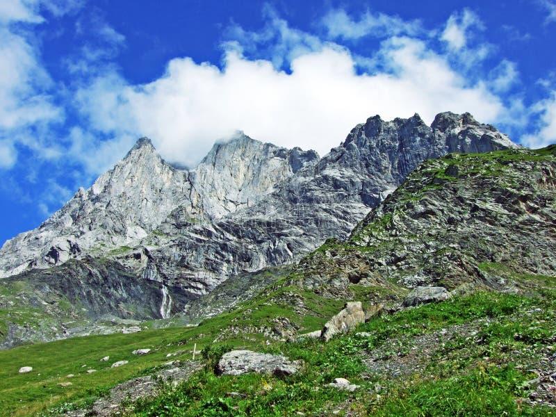 Glarner Vorab Westwand eller Vorab-Westwand, alm royaltyfria foton