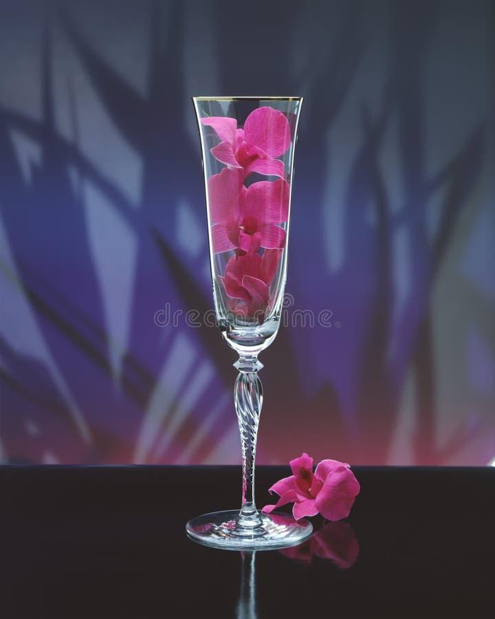 Download Glas stock afbeelding. Afbeelding bestaande uit glanzend - 281593