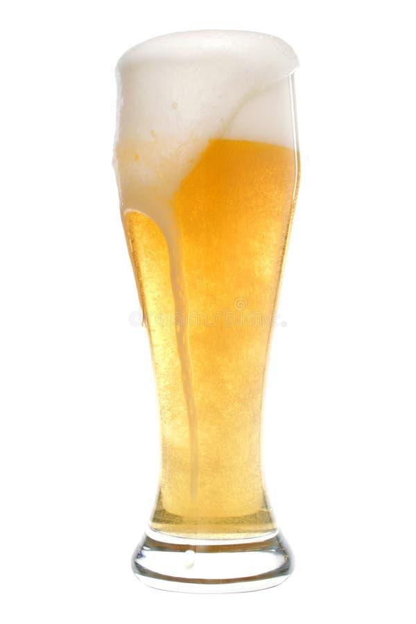 Glas Bier lizenzfreies stockfoto