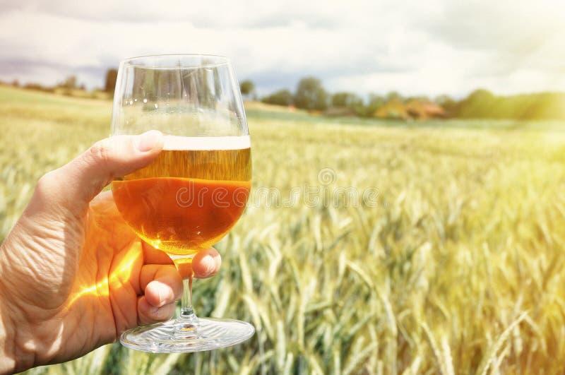Glas Bier in der Hand lizenzfreies stockfoto