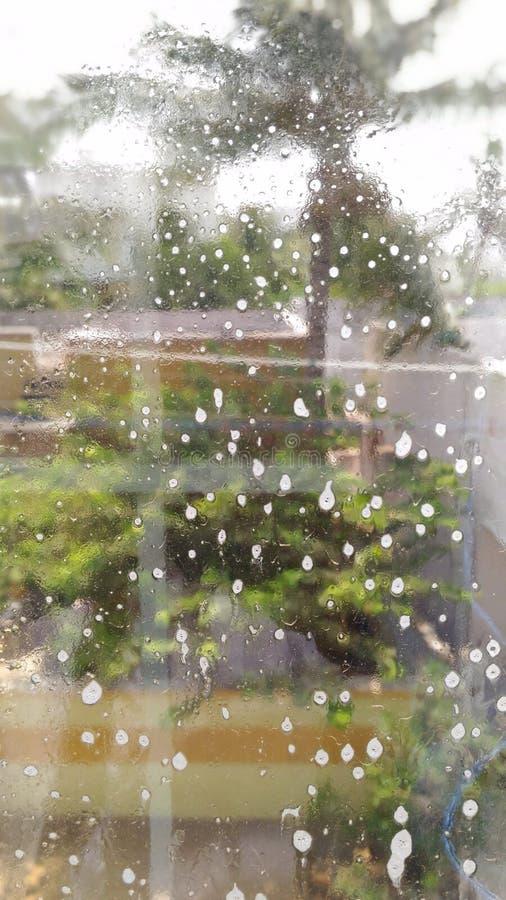 Glas in der Regenzeit stockfotografie