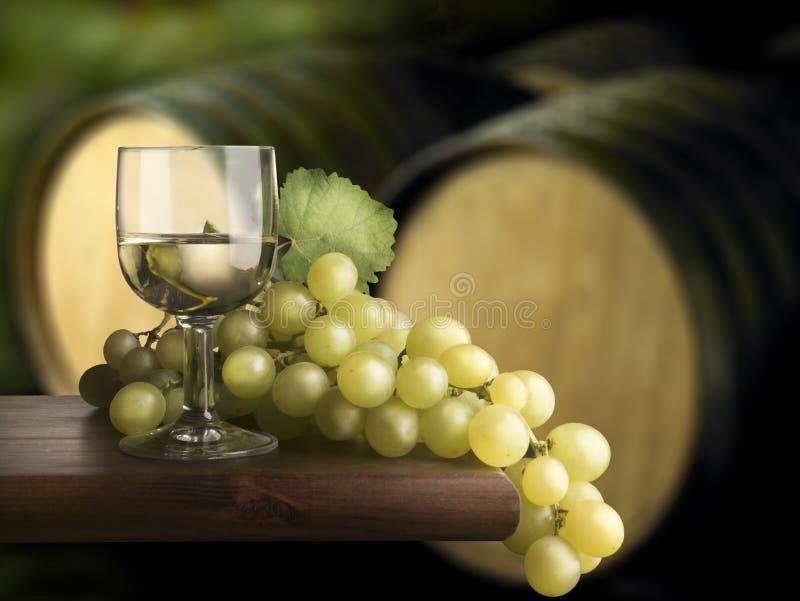 Glas des weißen Weins lizenzfreies stockbild