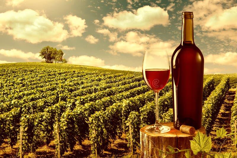 Glas en fles rode wijn tegen wijngaardlandschap royalty-vrije stock foto's
