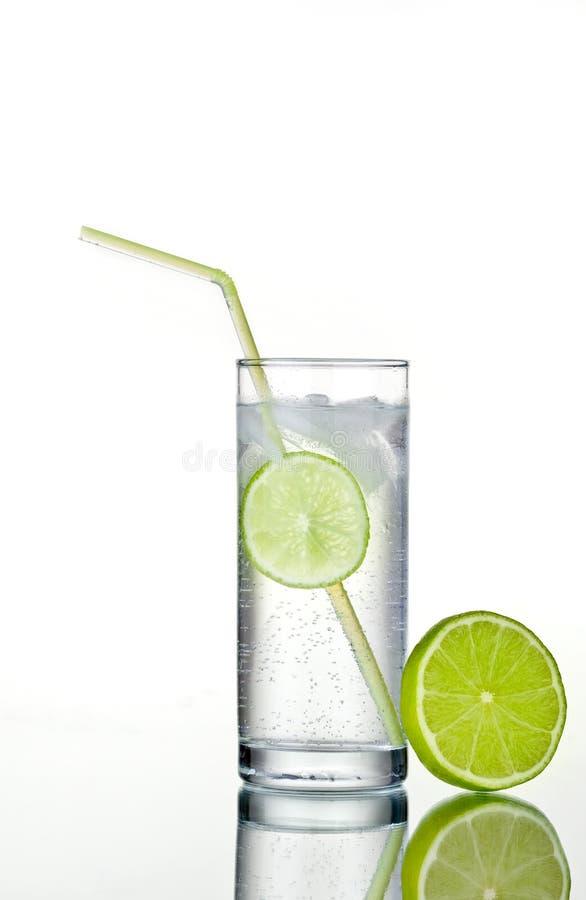 Glas Gin und Stärkungsmittel mit Eis und Kalk lizenzfreie stockfotografie