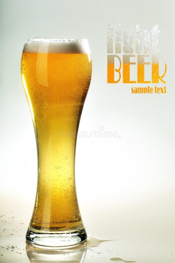 Glas kaltes helles Bier stockfoto