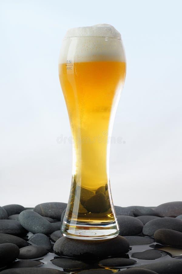 Glas kaltes helles Bier stockfotos