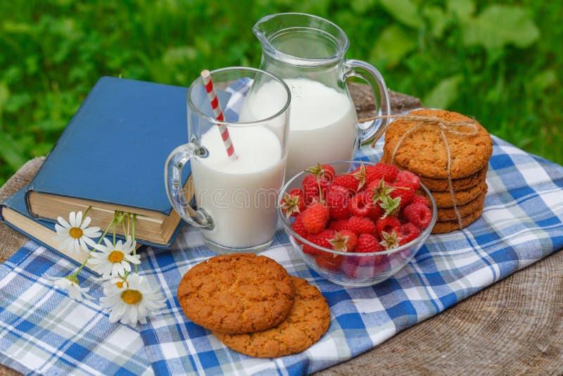Glas melk en kom van verse bessen in het openlucht plaatsen royalty-vrije stock foto