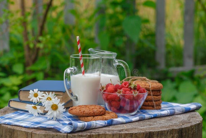Glas melk en kom van verse bessen in het openlucht plaatsen royalty-vrije stock fotografie