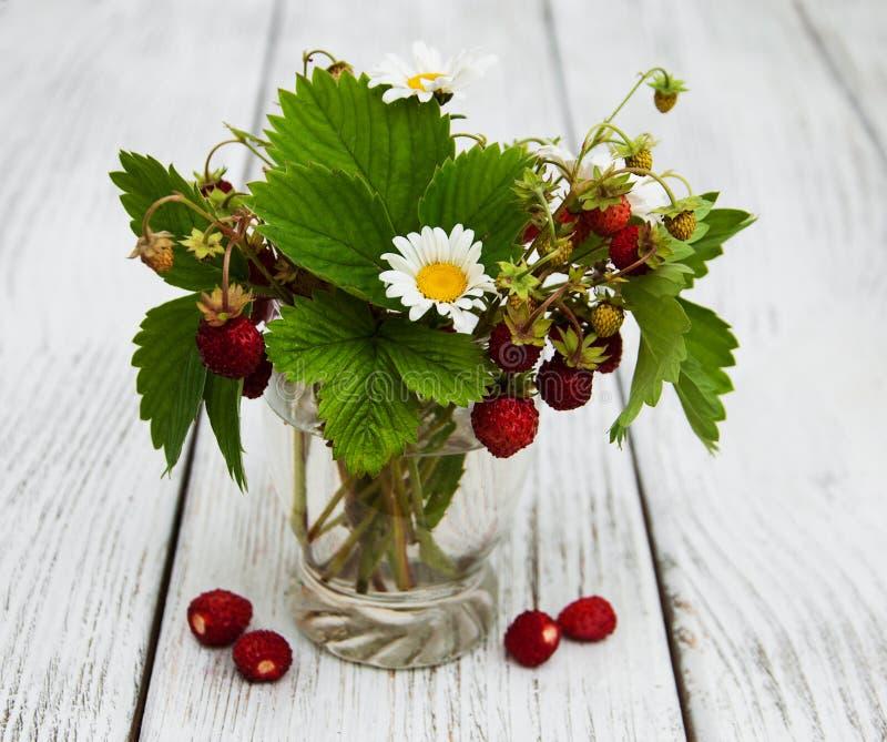 Glas met wilde aardbeien stock foto's