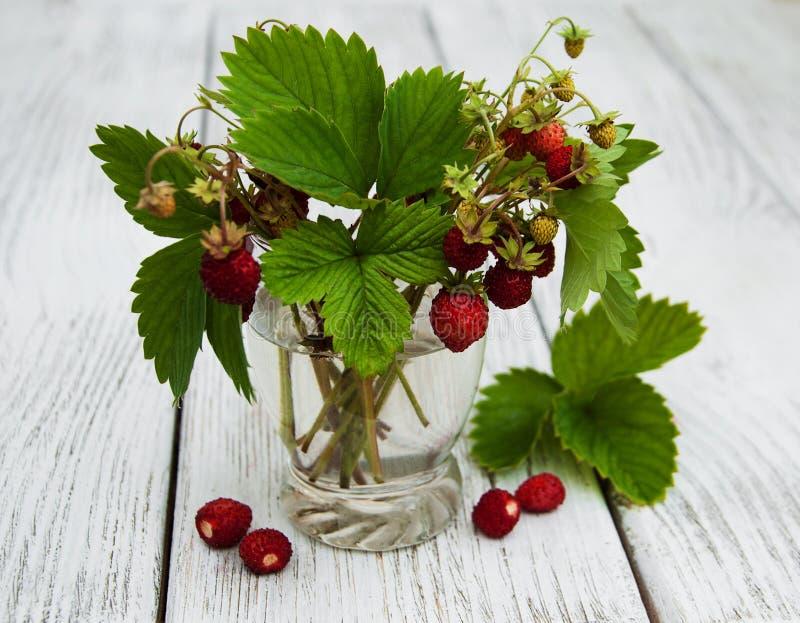 Glas met wilde aardbeien royalty-vrije stock foto