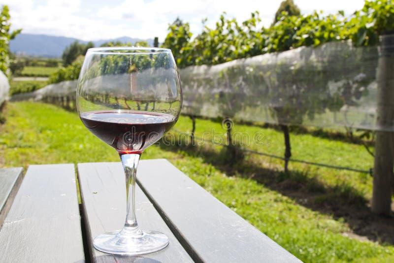 Glas mit Rotwein im Weinberg stockbild