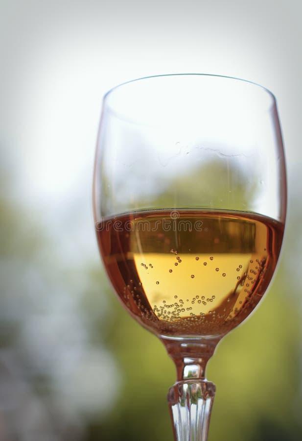 Glas mousserende wijn stock afbeelding