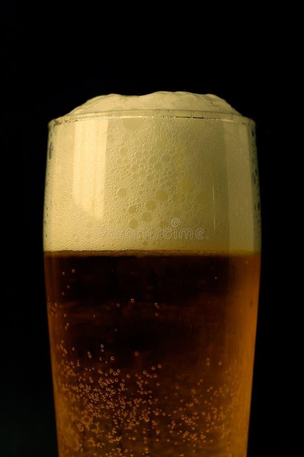 Glas perfectos de la cerveza - serie fotos de archivo libres de regalías