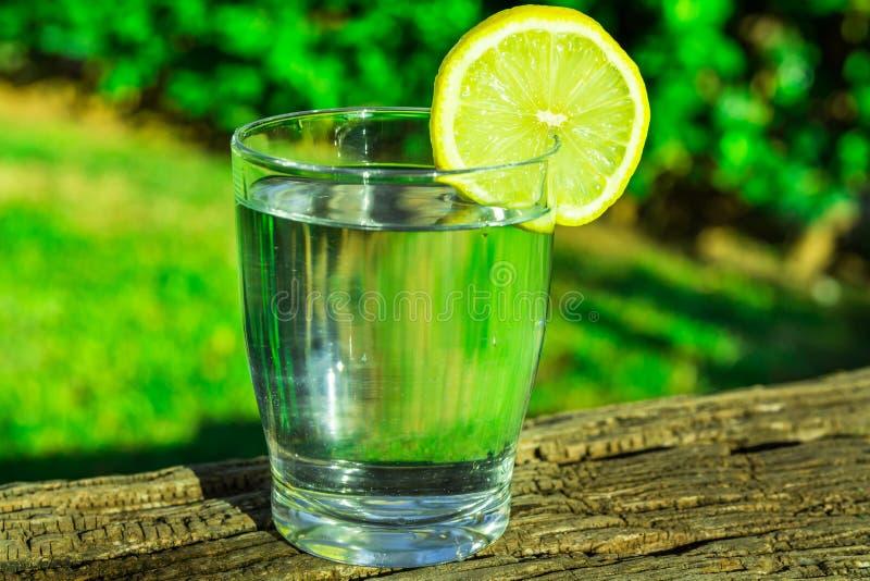 Glas reines Wasser mit Zitronenkeilkreis auf hölzernem Klotz, Anlagen des grünen Grases im Hintergrund draußen helles Sonnenlicht stockbild