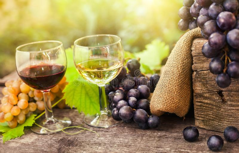 Glas rode en witte wijn stock afbeelding