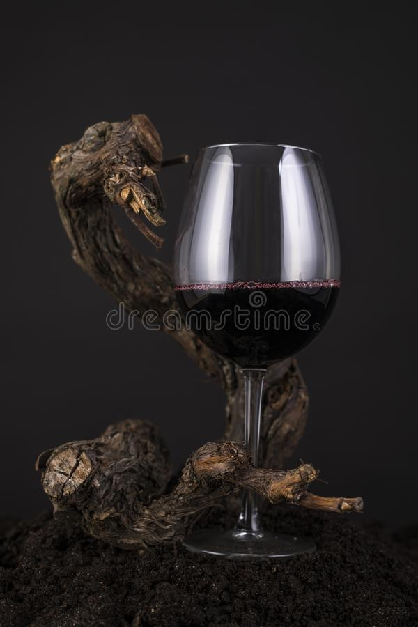 Glas Rotwein mit Rebe in einem schwarzen Hintergrund lizenzfreie stockfotos