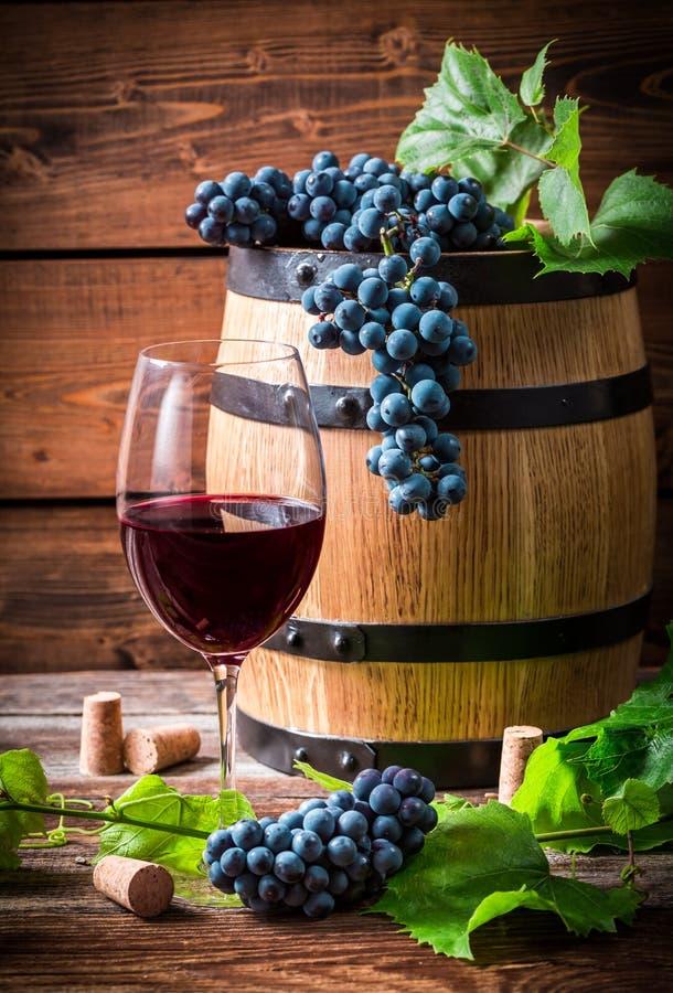 Glas Rotwein und Trauben stockfotos